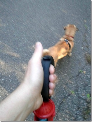 walking link